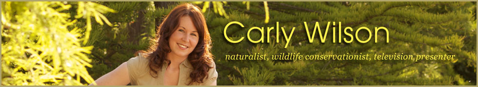 Carly Wilson - wildlife professional and presenter