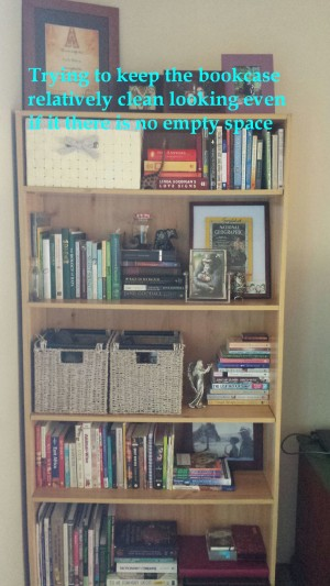 uncluttered bookcase